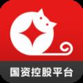 金贝猫app下载手机版 v1.1.0