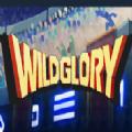 Wild Glory�h化版