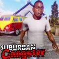 Suburban Gangster破解版